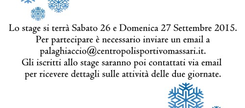 PATTINAGGIO SU GHIACCIO – STAGE GRATUITO SOCI A.S. 2014-15
